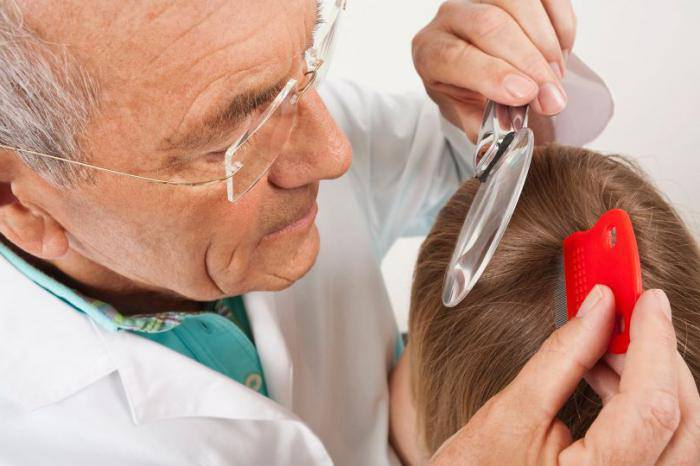 Dottore con lente leva ed elimina i pidocchi
